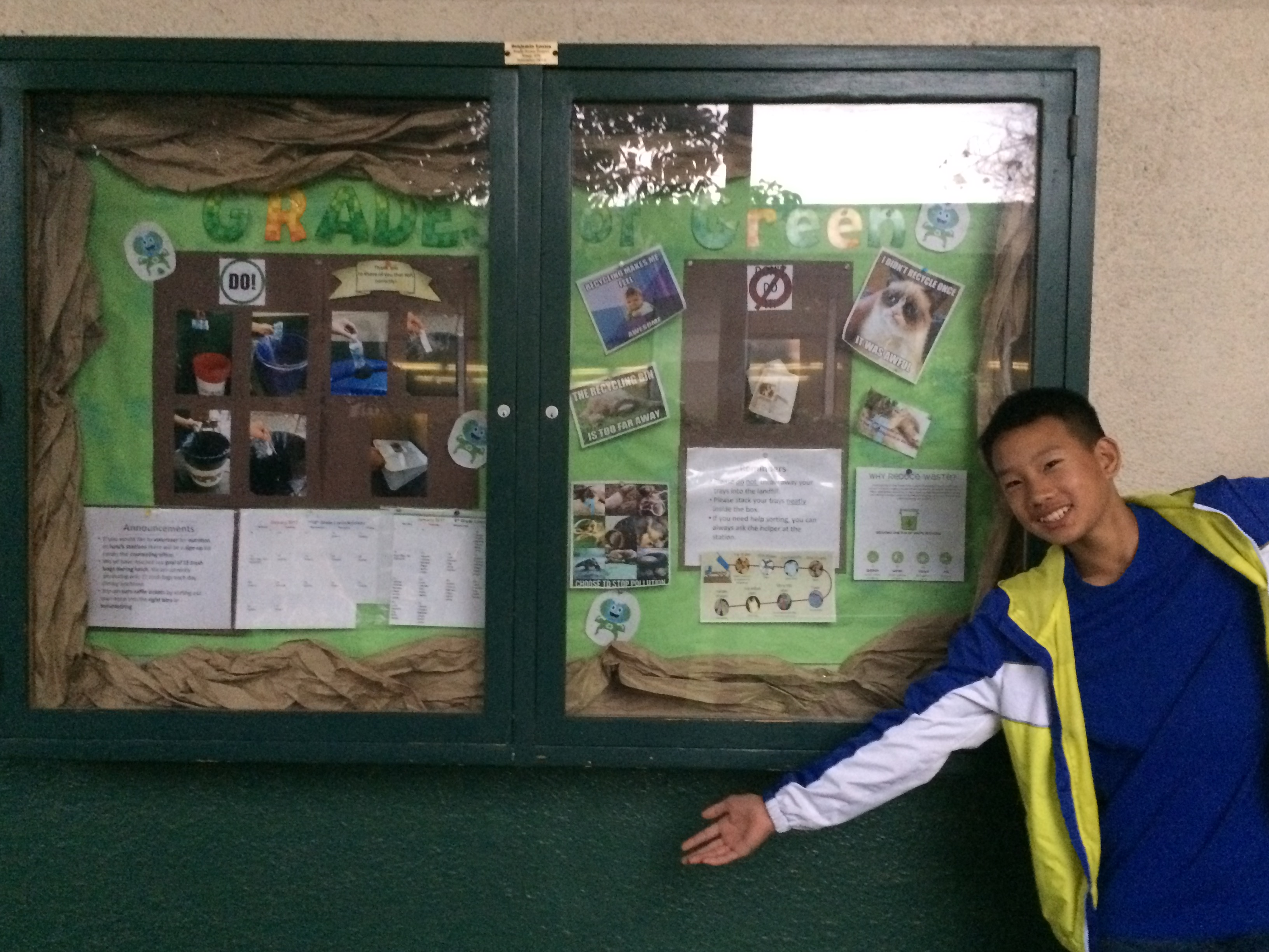 Make Your Own Eco-Display