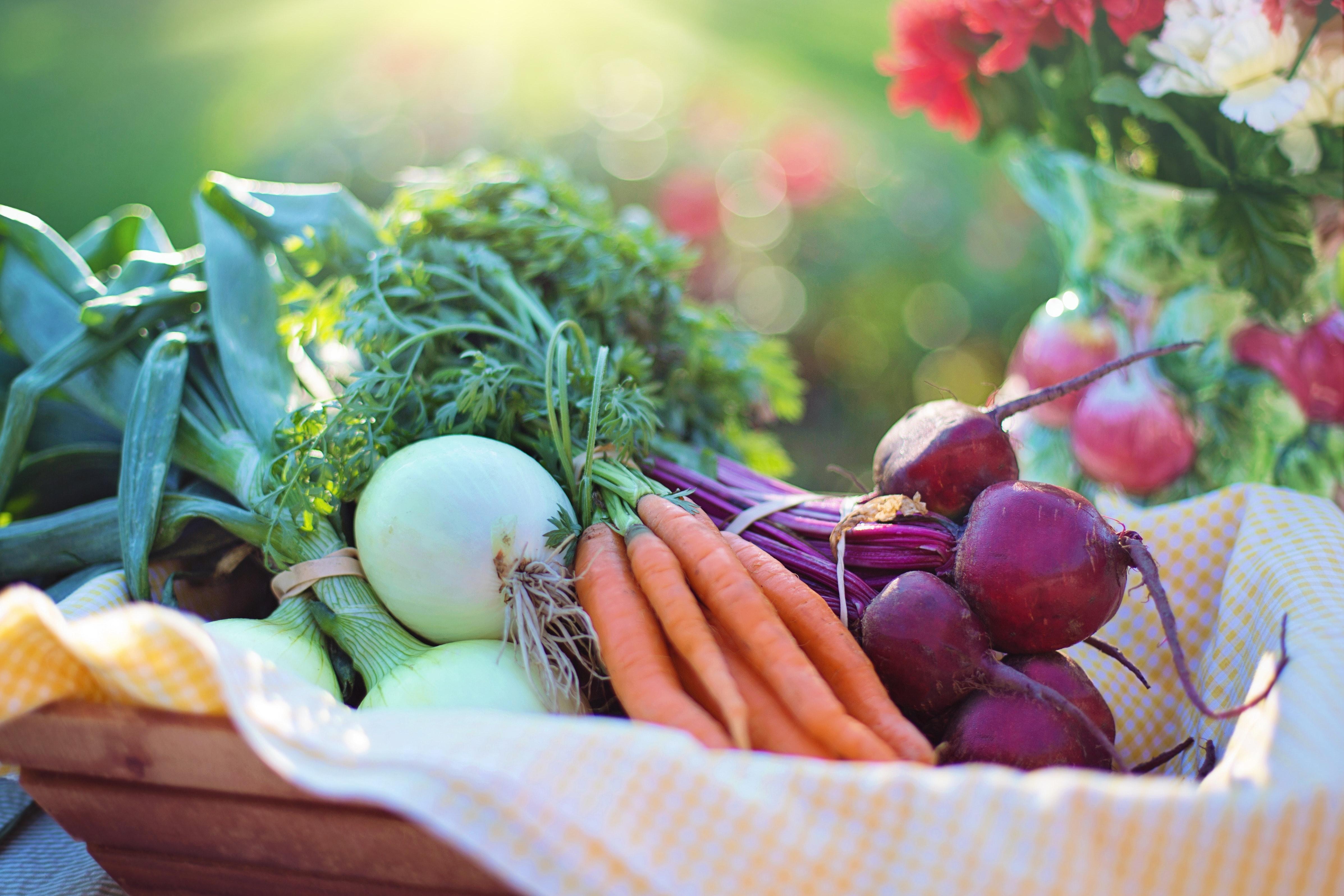 Eco Friendly Summer Recipes