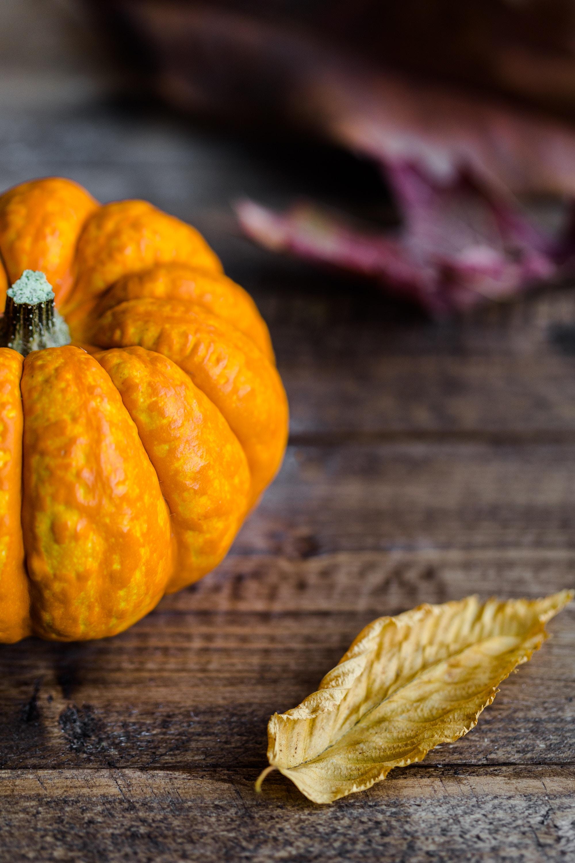 Post Thanksgiving Recipes